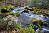 Chasteen Creek