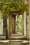 120102 Angkor 256.jpg