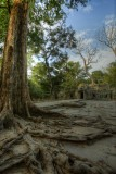 120103 Angkor 115_6_7.jpg