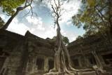 120103 Angkor 135_1.jpg
