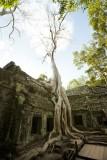120103 Angkor 144.jpg