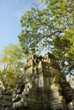 120103 Angkor 162_1.jpg