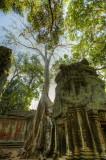 120103 Angkor 195_6_7.jpg
