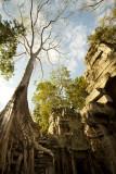 120103 Angkor 206.jpg