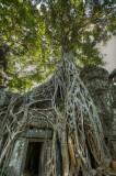 120103 Angkor 222_3_4.jpg