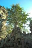 120103 Angkor 231-233.jpg