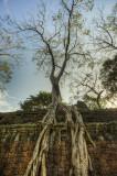 120103 Angkor 243_4_5.jpg