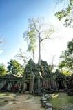 120103 Angkor 254_5_6_fused copy.jpg