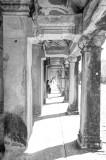 120103 Angkor 323_4_5_fused.jpg