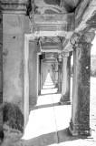 120103 Angkor 326_7_8_fused copy.jpg