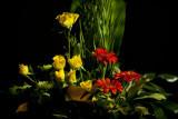 11-365 120619 F2 Flowers 007_1 sm.jpg