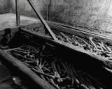 Bones in the catacombes