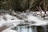 20111124_Banff_0013.jpg