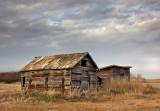 20111103_Alberta_0237.jpg
