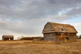 20111103_Alberta_0299.jpg