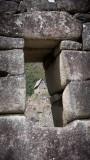 20120520_Machu Picchu_0054.jpg
