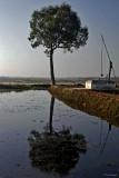 Inle Lake