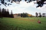 Hay Field, State Arboretum of Virginia