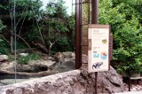 A Day at the Zoo V