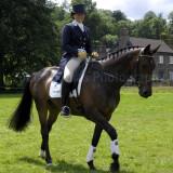 Horse trials3.jpg