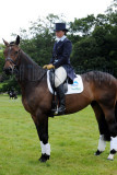 Horse trials9.jpg