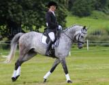 Horse trials14.jpg