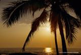 Hawaii_0070-copy.jpg