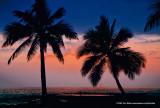 Hawaii_0076-copy.jpg