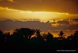 Hawaii_0138-copy.jpg