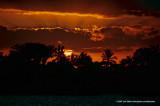 Hawaii_0139-copy.jpg