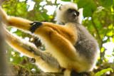 Madagascar-112.jpg