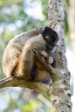 Madagascar-364.jpg