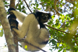 Madagascar-820.jpg