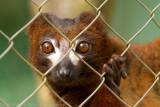 Madagascar-882.jpg