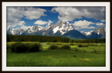 Teton Meadow and fence.jpg