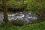 Canal Creek - Oregon