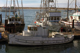 No Name - Morro Bay, California