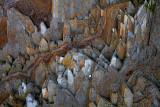 Stone Spikes - Montana de Oro State Park - California