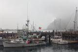 Fog - Morro Bay, CA
