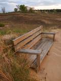 Bench In Sand - Kohler Andrae State Park - Wisconsin