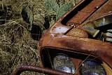 Abandoned Pickup