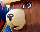 Smokey The Bear at Ogden Valley Balloon Fest