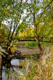Clive Park