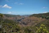 Alaka`i Swamp overlooking Waimea Canyon