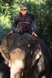 Bob, the elephant rider