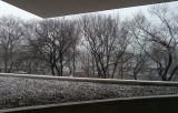Première neige sur Manhattan