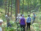 Birding Convention Tour