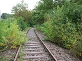 Old Tracks to Nowhere