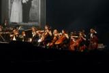 Orchestra Il Novecento