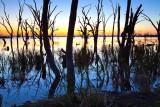 Pelican Point Sunrise